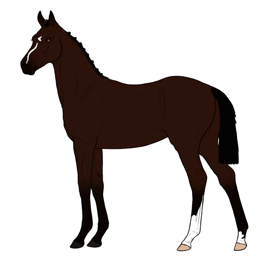Ink foal design by Song-Wolf-Farm
