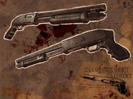 Shotgun Display by KruddMan
