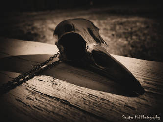Raven by SinissterKid