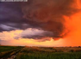 Sky 8 July 2008 - 8:47pm by loozak84