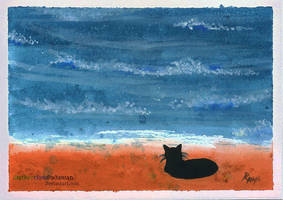 Cat On the Beach by SlytherclawPadawan