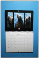 Calendar Print by Doubtful-Della