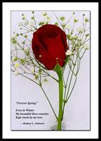 Forever Spring Haiku by TheWizardRod