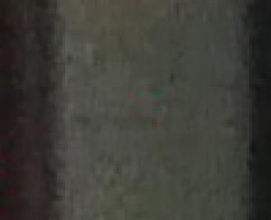 tod309's Profile Picture
