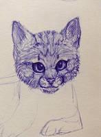 Pen meow - My sketchbook by Orbz-Firefly