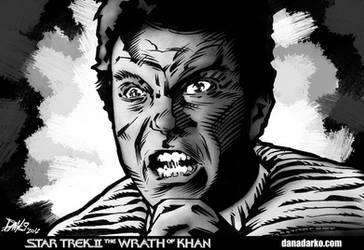 Star Trek II The Wrath of Khan by DanaNovaDarko