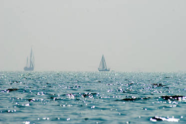 the rip tide by wronislawa