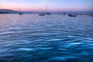 Blue Velvet by StamatisGR