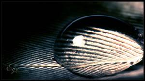 Eye by WojciechDziadosz