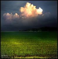 The Storm by WojciechDziadosz