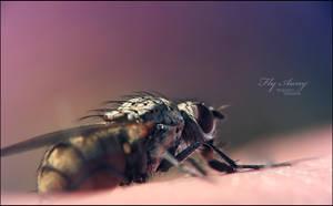Fly Away by WojciechDziadosz