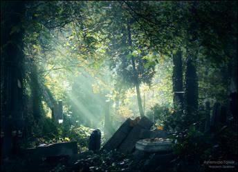 Ashenvale Forest by WojciechDziadosz