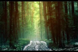 Tales of Forest by WojciechDziadosz