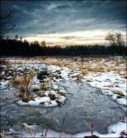 Frozen Swamps by WojciechDziadosz