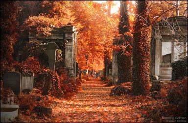 Sleeping Garden by WojciechDziadosz
