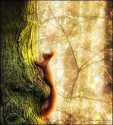 I love you, Nature by WojciechDziadosz