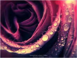 Sometimes when it rains. by WojciechDziadosz
