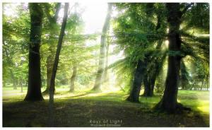 Rays of Light by WojciechDziadosz
