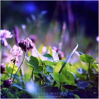 Lucky World by WojciechDziadosz