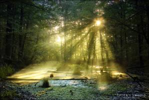 Shrek's swamp by WojciechDziadosz