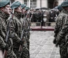 The Honor and The Homeland IV by WojciechDziadosz