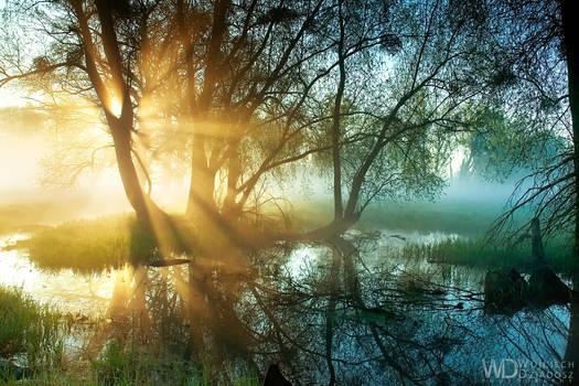 Dreamland by WojciechDziadosz