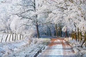 Snowy Path by WojciechDziadosz