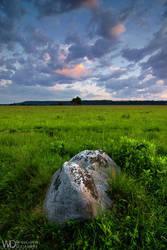 Lonely by WojciechDziadosz