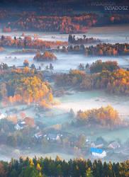 Golden autumn I by WojciechDziadosz