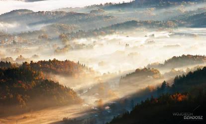 Golden autumn IV by WojciechDziadosz