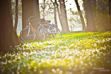 Two bicycles by WojciechDziadosz