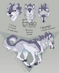 Endo Ref by Akirow