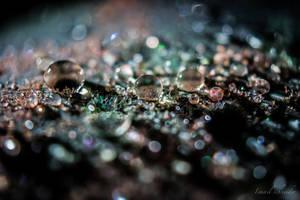 sparkling in the dark by isischneider