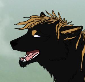 Stalkkeri-wolf's Profile Picture