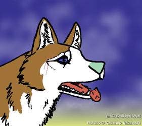 Hakurou by Stalkkeri-wolf