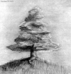 Pencil,Tree nd an empty scene by MEmreSoyak