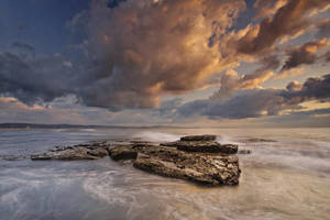 Long Reef Gold by timbodon