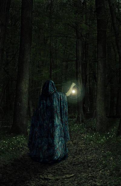 Enchanted forest by Djsanka
