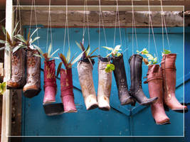 Flower boots by maska13