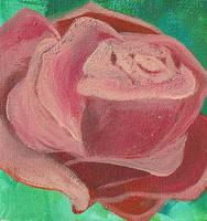 rose by JuLaIa