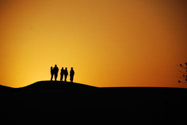 sunset silhouette by asininechani