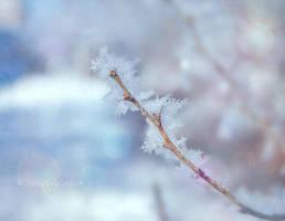 Winter 2 by Nyx-art