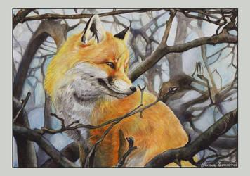 Fox by DrawnByYou