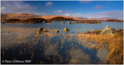 Reeds and Water 3 by Photo-Joker