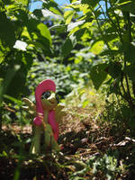 A Frolic thru the Forest 2 by dustysculptures