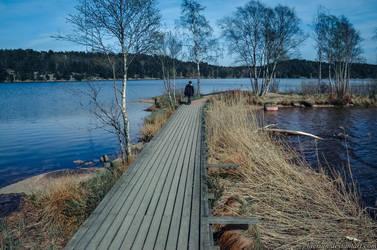 Swedish mood by Laerian