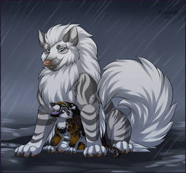 Protector from rain by SilvergriN-w