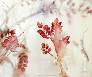 Autumn dogrose by jakhont