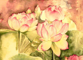 Lotus 2 by jakhont