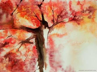It's beautiful by jakhont